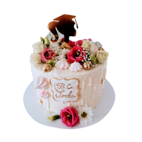 graduation cake 44 6