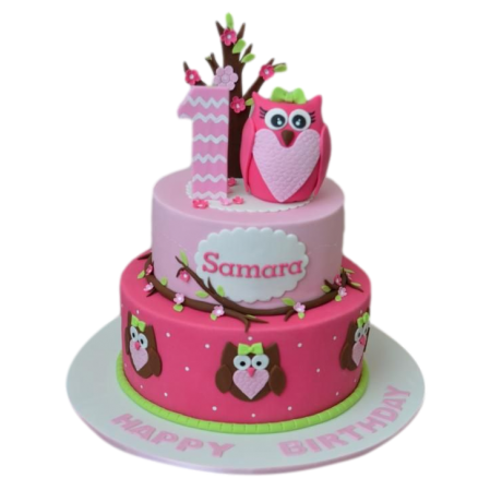 first birthday cake with owl 12