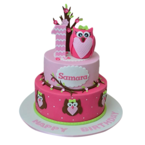 first birthday cake with owl 13