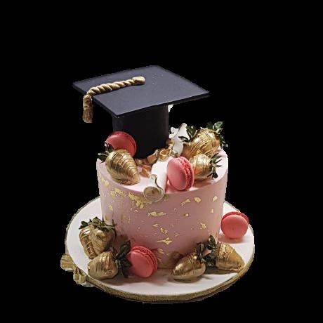 graduation cake 16 6