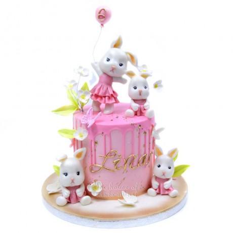 bunny rabbits cake 2 6