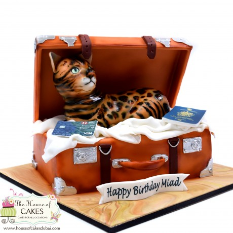 cat in suitcase cake 6
