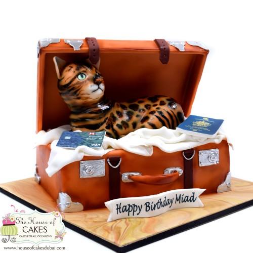 cat in suitcase cake 7