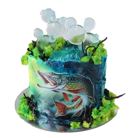 fishing cake 4 6