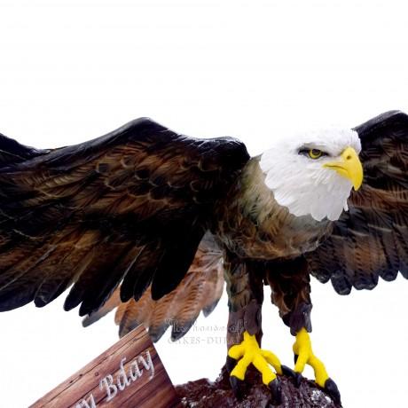 3d eagle shaped cake 14