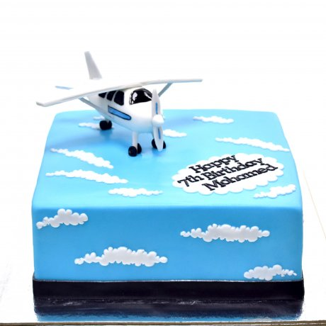 Cake with plane 2