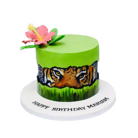 Fault line cake with tiger face
