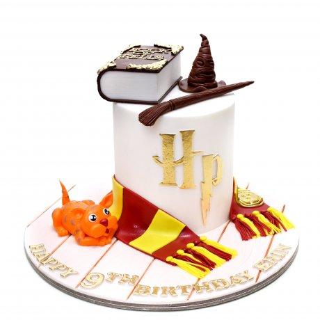 Harry Potter Cake 10