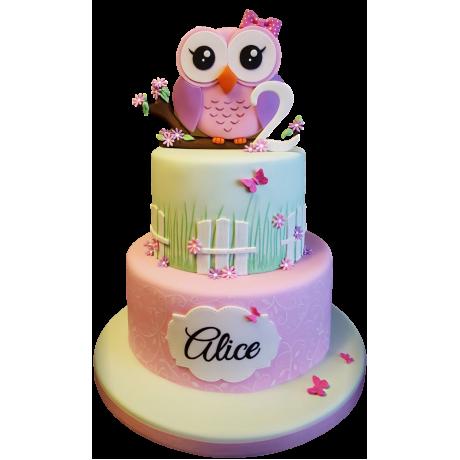 owl cake 4 6