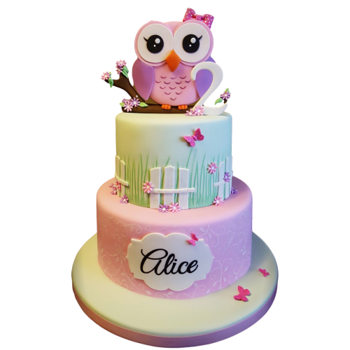 owl cake 4 7