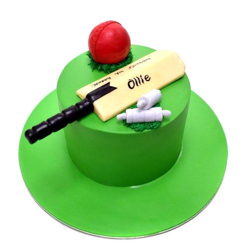Cricket cake 5