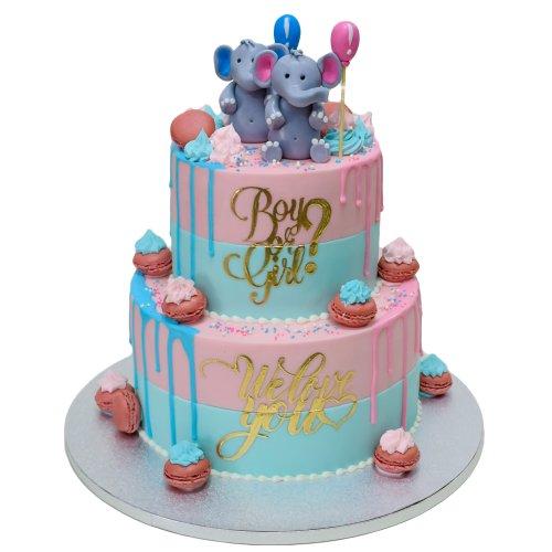 Gender Reveal Cake 5