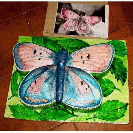 Butterfly Shape cake