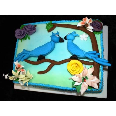 cake rio 6