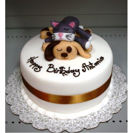 cute pets cake 6