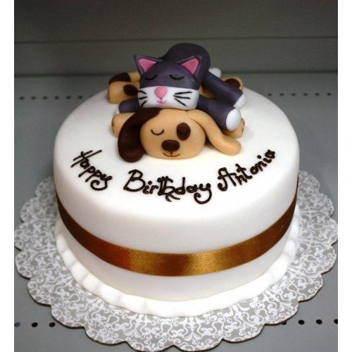 cute pets cake 7