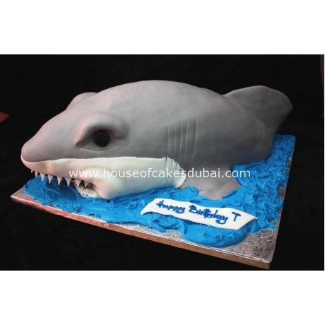 3d shark cake 13