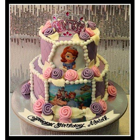 princess sofia cake 4 7