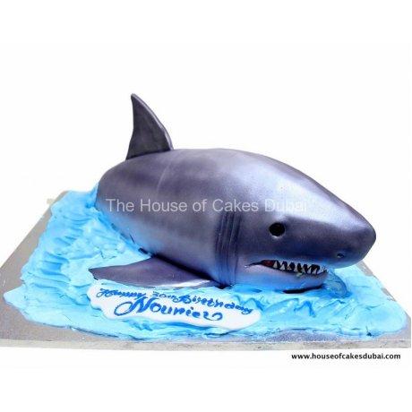3d shark cake 12
