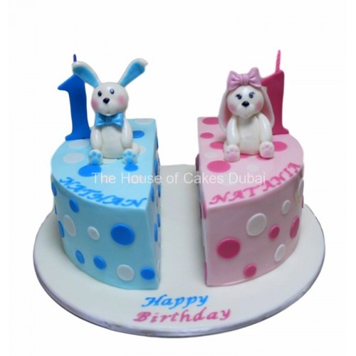 Fabulous Twins Birthday Cake 2 Funny Birthday Cards Online Alyptdamsfinfo