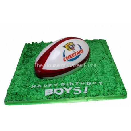 cheetahs rugby team cake 6