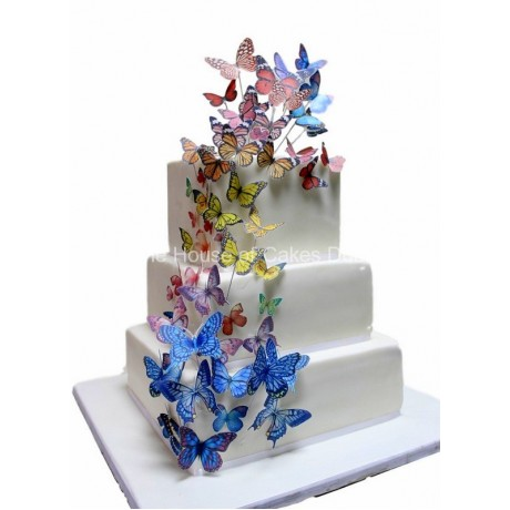 Cake with butterflies 6