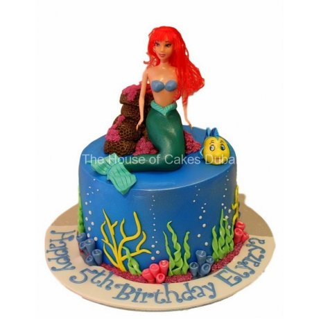 Ariel Cake 19