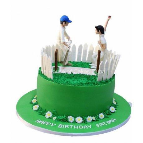 cricket cake 4 6