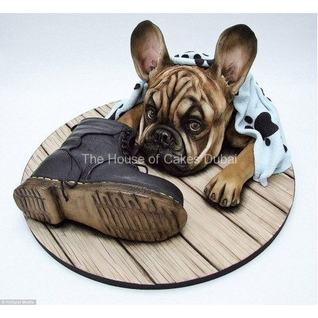 Dog and shoe cake
