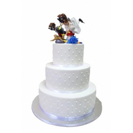 wedding cake diving theme 6