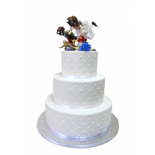 Wedding cake diving theme