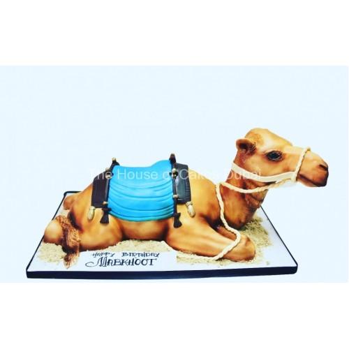 camel cake 5 8