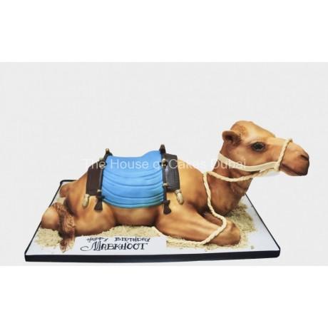 camel cake 5 7