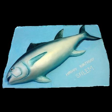 tuna fish cake 6