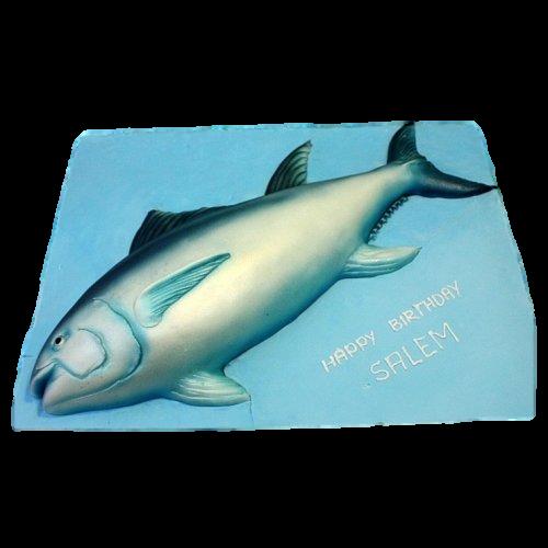 tuna fish cake 7
