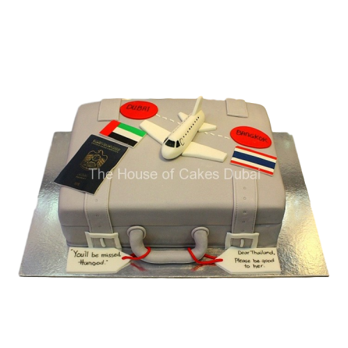 Farewell suitcase cake 2
